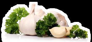 garlic 250